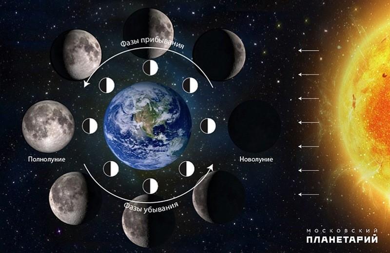 фазы Луны картинка схема