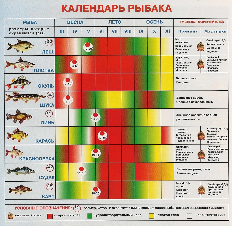 Календарь-рыбака-весна-лето-осень