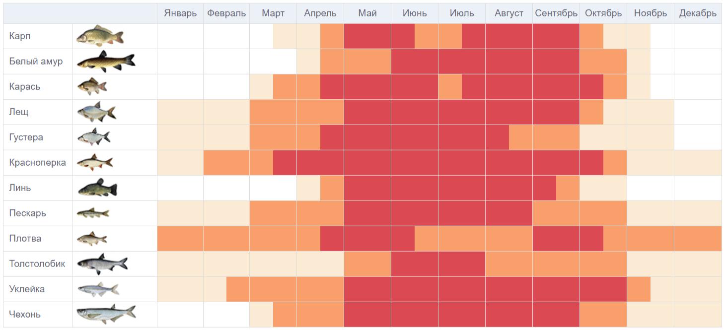таблица клёва мирной рыбы на год