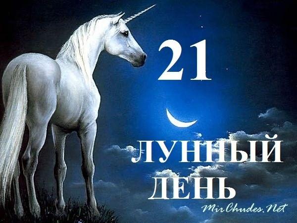 21 лунный день (лунные сутки)