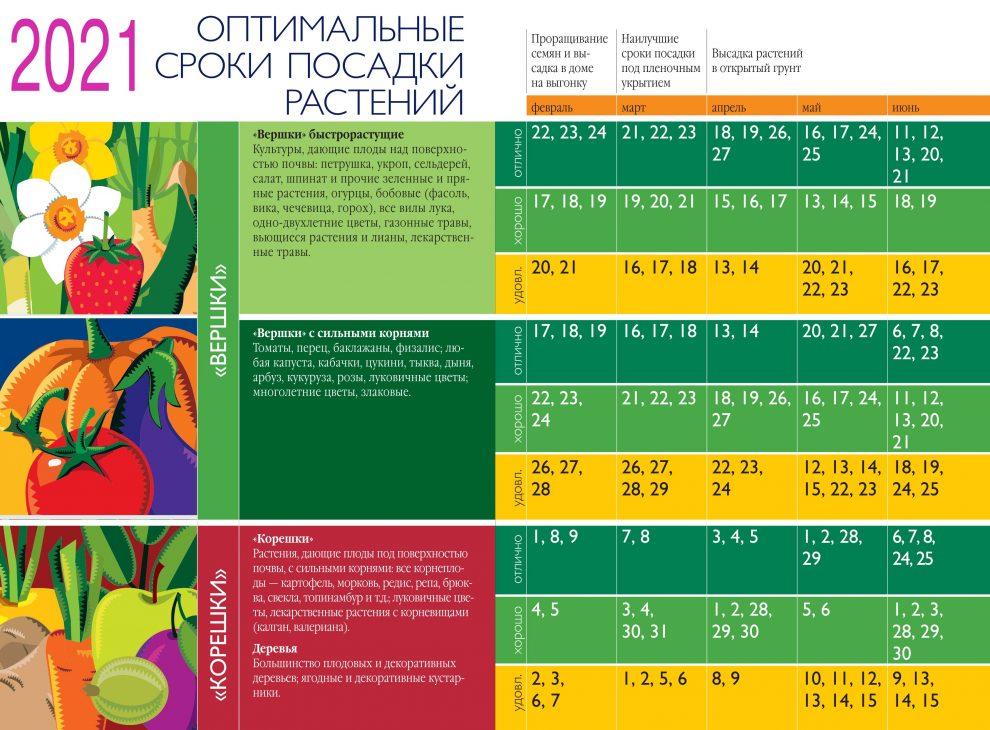 оптимальные сроки посадки растений 2021 год
