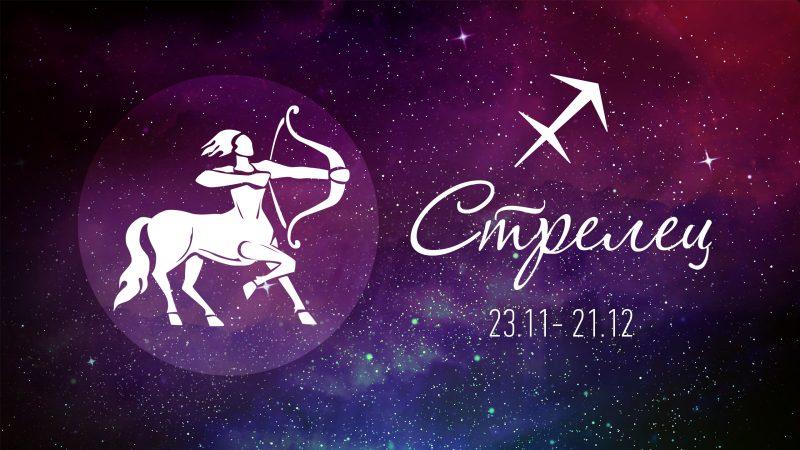 Стрелец гороскоп на год для этого знака